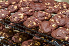 Making of Chocolate Peanut Butter Chip Cookies Royalty Free Stock Image
