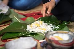 Making Chung cake by hands closeup, Chung cake is the most important traditional Vietnamese lunar New Year Tet food.  royalty free stock photo