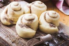 Making cinnamon buns. Homemade yeast dough after raising Royalty Free Stock Photo