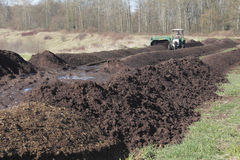 Making Compost Stock Image