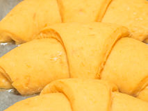 Making Crescent Rolls Stock Photography