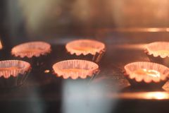 Making cupcakes, baking process. Photo from kitchen. Royalty Free Stock Image