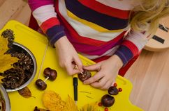 Making decoration from chestnuts Royalty Free Stock Images