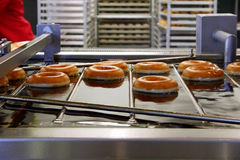 Making Donuts. Automated donut making machine with glazed donuts.  This is a close-up of donuts frying in oil Royalty Free Stock Photography