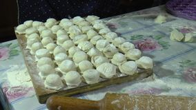 Making dumplings at home / Making dumplings at home using a special form for raviol stock video