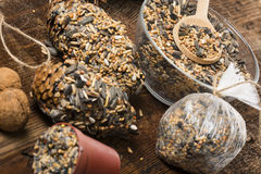 Making feeders for birds from seeds and fat Royalty Free Stock Photos