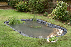 Making a Garden Pond. This image shows the completed pond (see image 15914103), with plants and stones added Royalty Free Stock Photography