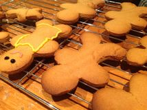 Making Gingerbread Men Stock Photography