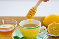 Making of Green tea with ginseng and sage set stock image