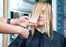 Making haircut Stock Photography