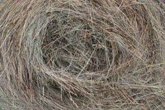Making hay Royalty Free Stock Photo