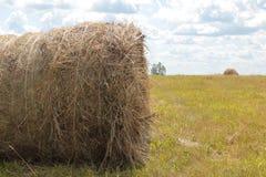 Making hay Royalty Free Stock Image
