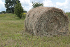 Making hay Stock Photos
