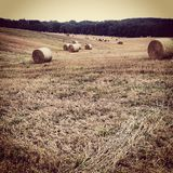 Making Hay - Kent Countryside Stock Photos