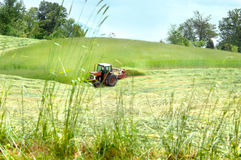 Making Hay. Tennessee farmer travels across field in a red tractor cutting hay.  Hay falls in rows behind tractor Royalty Free Stock Photo
