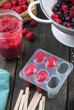 Making homemade summer fruit lolly pops Royalty Free Stock Images