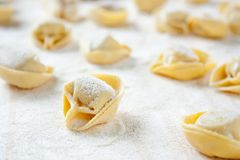 Making homemade tortellini Royalty Free Stock Image