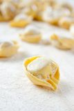 Making homemade tortellini Stock Photography
