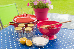Making jam from fresh fruit Royalty Free Stock Image