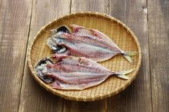 Making japanese dried fish, sakana no himono Royalty Free Stock Photo