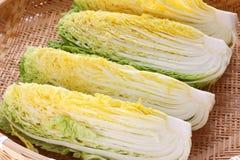 Making kimchi Stock Images