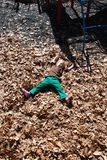 Making leaf angels Stock Image