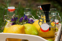 Making lemon lemonade Stock Photo