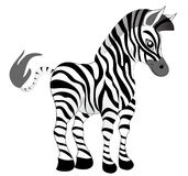Making look younger nice zebra Stock Image