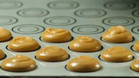 Making macaron macaroon, french dessert, squeezing the dough form cooking bag. stock photos
