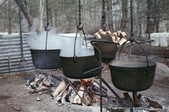 Boiling Maple Sap to Make Syrup Stock Photo