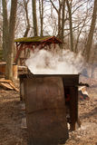 Making Maple Syrup Royalty Free Stock Photos