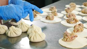 Making meat dumpling at meat factory. Female workers in white latex gloves and uniform wrap meat in dough. Meat factory. Proccesing stock video footage