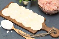 Making meat dumplings. Traditional russian food. Stock Images