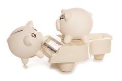 Making money busking. Studio cutout royalty free stock images