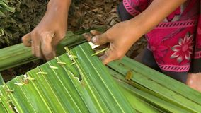 Making a nipa palm thatch panel, Rakhine , Myanmar. Extreme close-up high-angle still shot of a local Burmese woman making a traditional roof panel using nipa stock footage