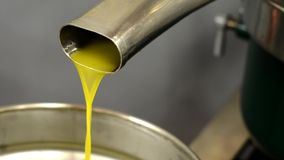 Making olive oil with olives in mill -  collage stock video footage