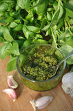 Making Pesto. With fresh basil, garlic, pine nuts, parmesan cheese and olive oil Royalty Free Stock Photos