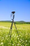 Making photography. royalty free stock photo