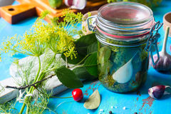 Making pickled cucumbers, homemade pickles in jar royalty free stock photos