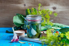 Making pickled cucumbers, homemade pickles in jar stock photography