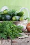 Making pickles royalty free stock photography