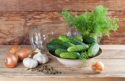 Making pickles stock image