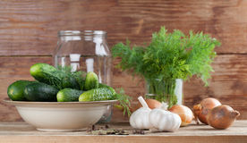 Making pickles Royalty Free Stock Images