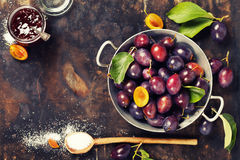 Making plum jam Stock Photography