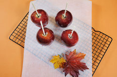 Making red toffee apples for Halloween trick or treat food candy Stock Images