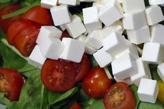 Making Salad with Feta, Tomatoes and Spinach royalty free stock photos