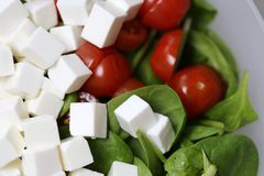 Making Salad with Feta, Tomatoes and Spinach royalty free stock photography