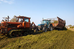 Making silage stocks Stock Images