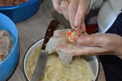 Making sour cabbage rolls. Woman making sarmale, sour cabbage rolls Stock Image