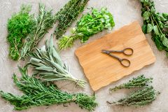 Making spices with fresh herbs and greenery for cooking stone kitchen table background top view Royalty Free Stock Photography